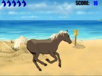 Pferde Rennen am Strand