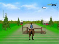 Pferde Springen